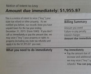 """excerpt of an IRS letter with the heading """"Notice of Intent to Levy - Amount due immediately: $1,955.87"""""""
