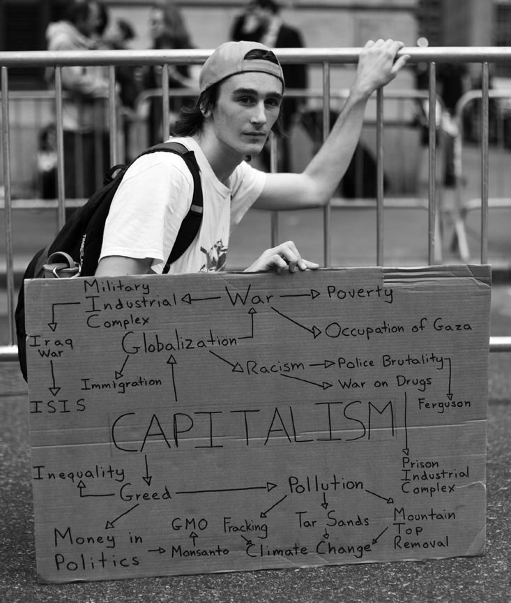 flowchart showing the relationships of other issues to capitalism