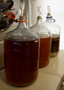 three carboys full of fermenting homebrew