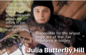 "picture of Julia Butterfly Hill in her tree-sit with text, "" ""The greatest changes in history have only come when people are willing to put everything on the line."" - Responsible for the largest single act of War Tax Resistance in history - Julia Butterfly Hill"""