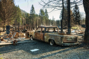 image of a car that has been burned  surrounded by tree that have been burned from fire