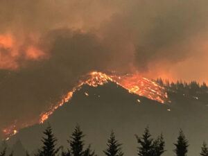 image of mountain tops covered in flames surrounded by smoke and evergreen trees lining the bottom portion of photo